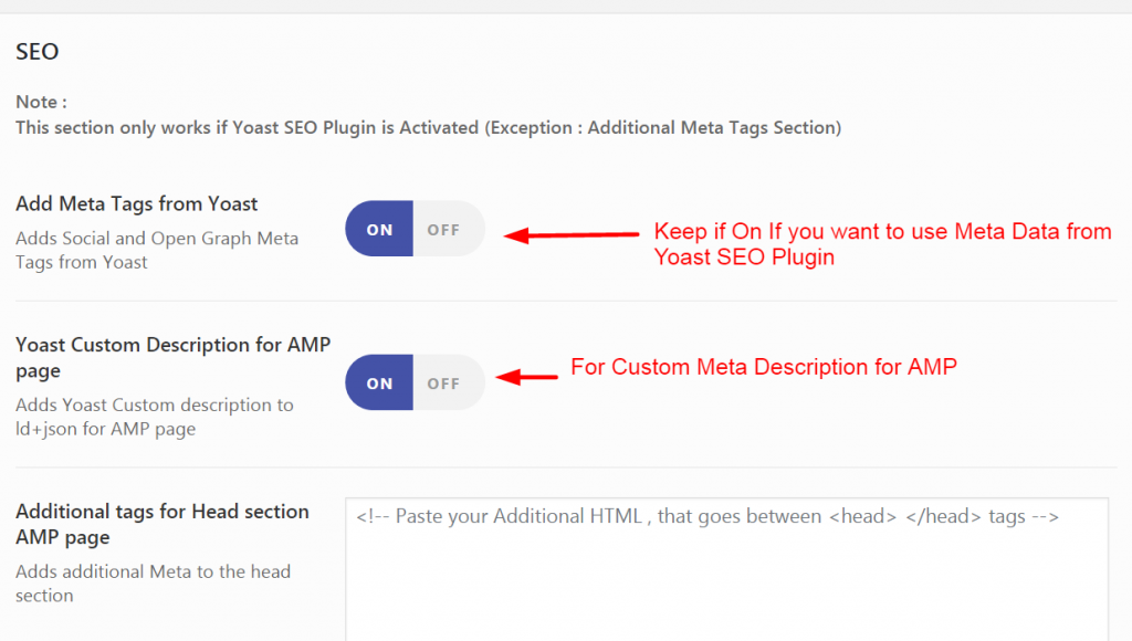 SEO Settings for AMP Site